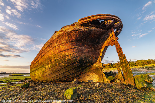 Rusting Ship Wreck  Canvas Print by Anthony Rigg