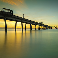 Buy canvas prints of Deal Pier  by Anthony Rigg