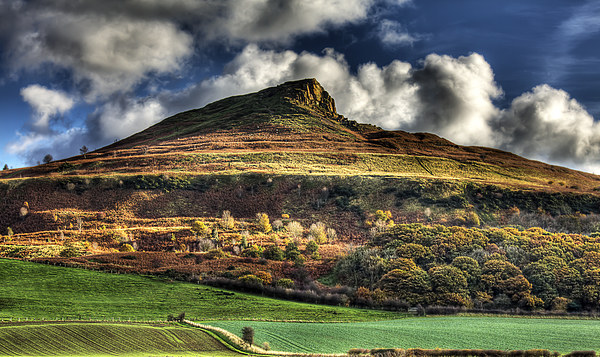 Autumn Gold - Roseberry Topping Canvas print by Nigel Lee