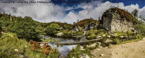 Haytor Quarry Dartmoor Canvas print by Tracey Yeo. Devon Photography