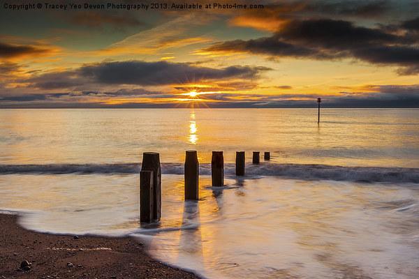 Beach Golden Sunrise Canvas print by Tracey Yeo. Devon Photography