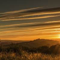 Buy canvas prints of Golden Rays by Tracey Yeo. Devon Photography
