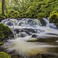 Buy canvas prints of Golitha Falls by Tracey Yeo. Devon Photography