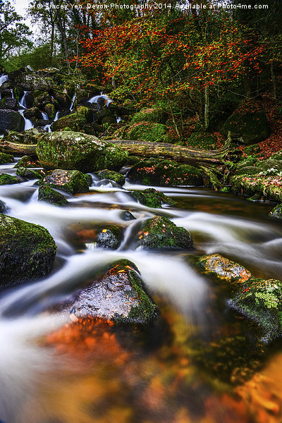 Becky Falls Canvas print by Tracey Yeo. Devon Photography
