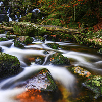 Buy canvas prints of Becky Falls by Tracey Yeo. Devon Photography