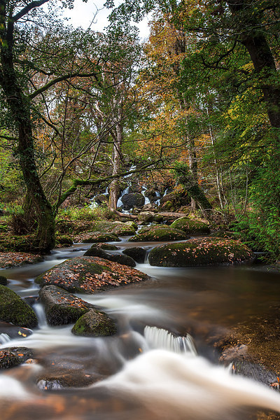Below The Falls. Canvas print by Tracey Yeo. Devon Photography