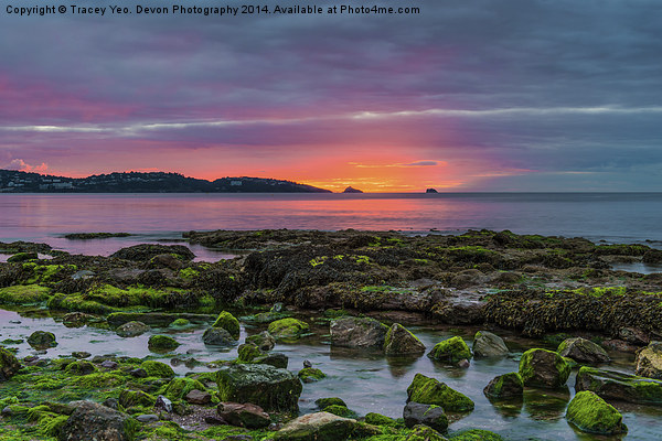 Before The Dawn Canvas print by Tracey Yeo. Devon Photography