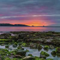 Buy canvas prints of Before The Dawn by Tracey Yeo. Devon Photography