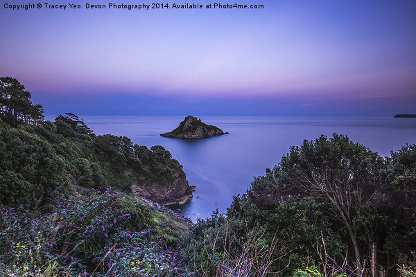 Thatcher Rock at Sunset Canvas print by Tracey Yeo. Devon Photography