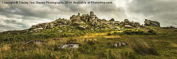 Hound Tor on Dartmoor Canvas print by Tracey Yeo. Devon Photography