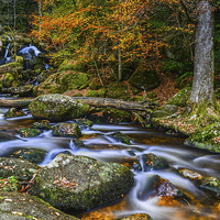 Buy canvas prints of Autumn At The Falls  by Tracey Yeo. Devon Photography