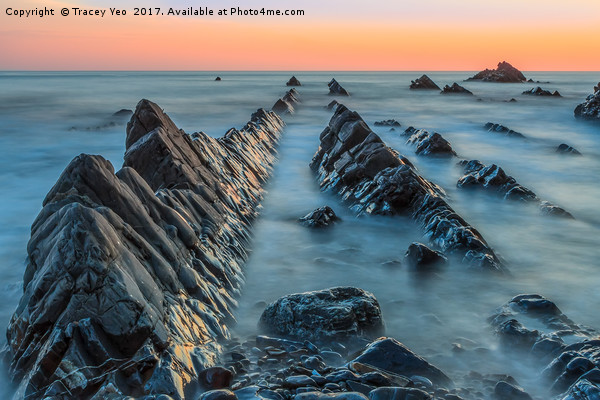 Hartland Quay Sunset. Canvas print by Tracey Yeo