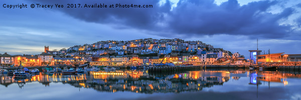 Brixham Harbour. Canvas print by Tracey Yeo