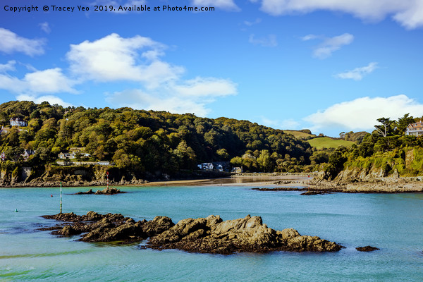 Salcombe Estuary At Low Tide. Canvas print by Tracey Yeo