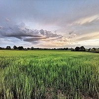 Buy canvas prints of The Shropshire Landscape  by Lauren Bywater