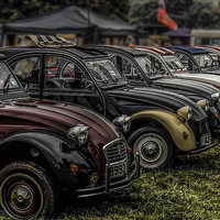 Buy canvas prints of  2CV LineUp by Graham Beerling