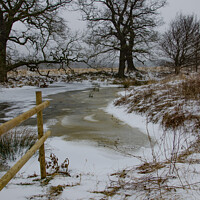 Buy canvas prints of Frozen Brook by Robert Maddocks