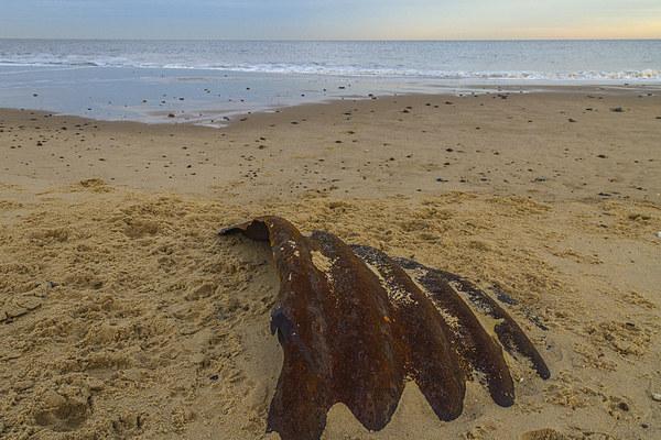 Hemsby Beach Scrap Metal Canvas Print by James Taylor