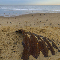 Buy canvas prints of Hemsby Beach Scrap Metal by James Taylor