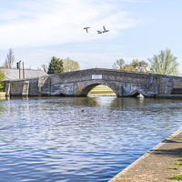 Buy canvas prints of Potter Heigham Bridge with flying ducks by James Taylor