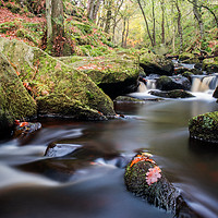 Buy canvas prints of Padley Gorge by Jason Moss