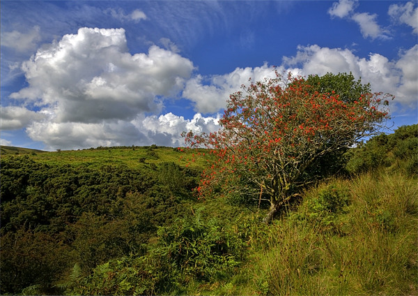Exmoor At Its Best Print by Mike Gorton