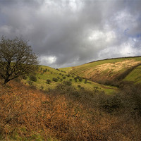 Buy canvas prints of Exmoor Valley by Mike Gorton