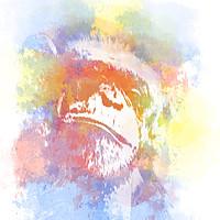 Buy canvas prints of Chimpanzee Pop Art by Darren Wilkes