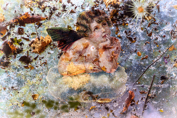 The angel of the leaves Canvas print by Guido Parmiggiani