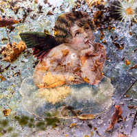 Buy canvas prints of The angel of the leaves by Guido Parmiggiani
