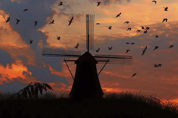 mill and gulls at sunset   Framed Print by Guido Parmiggiani