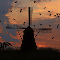 Buy canvas prints of  mill and gulls at sunset   by Guido Parmiggiani
