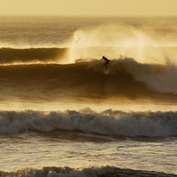 Buy canvas prints of Surfer by Spenser Davies