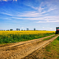 Buy canvas prints of Country Life by Jason Williams