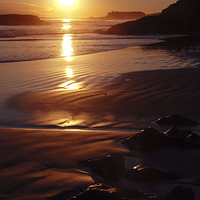 Buy canvas prints of Cox Bay Sunset by Carolyn Eaton