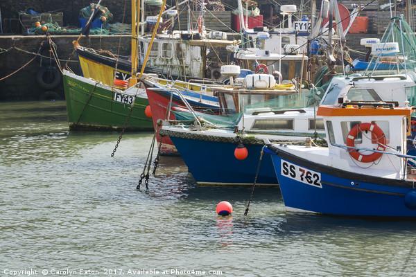 Mevagissey Fishing Boats, Cornwall Canvas print by Carolyn Eaton