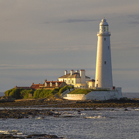 Buy canvas prints of St Marys Lighthouse by Alan Tunnicliffe