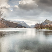 Buy canvas prints of  Llyn Padarn & The Lone Tree by Christine Smart