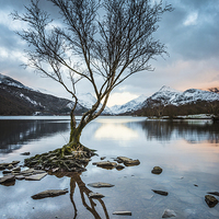 Buy canvas prints of  As Darkness Falls - Llyn Padarn by Christine Smart