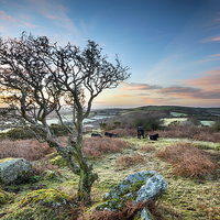 Buy canvas prints of Frosty Sunrise at HelmanTor by Helen Hotson