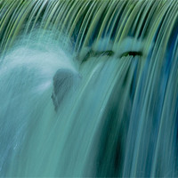 Buy canvas prints of Water Water by Mark Robson