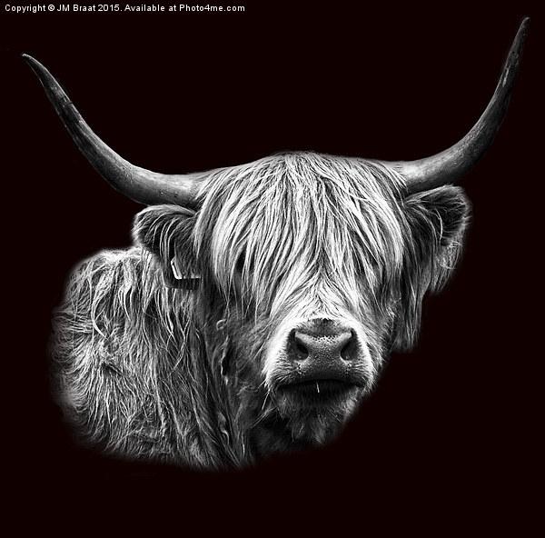 Highland Cow Portrait Canvas print by JM Braat