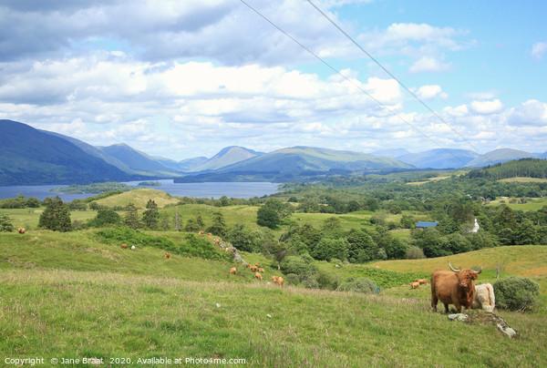 Loch Awe Landscape Canvas Print by Jane Braat