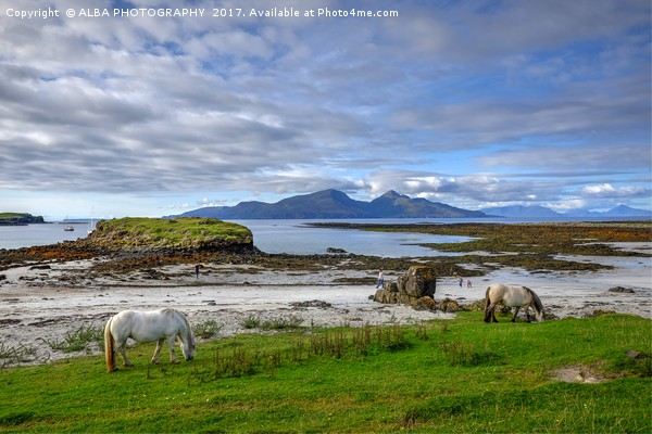 Isle of Rum, Small Isles, Scotland Canvas Print by ALBA PHOTOGRAPHY