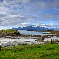 Buy canvas prints of Isle of Rum, Small Isles, Scotland by ALBA PHOTOGRAPHY