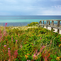 Buy canvas prints of Late Summer on the Baltic Sea by Gisela Scheffbuch
