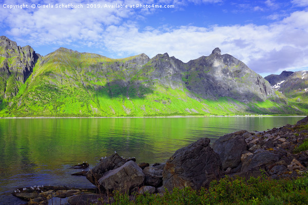 Panoramic View on the Island of Senja Canvas print by Gisela Scheffbuch