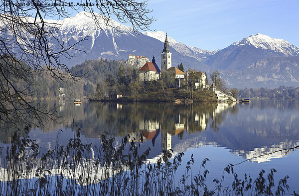 Church of the Assumption of Mary on Bled Island La Canvas print by John Keates