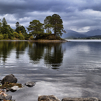 Buy canvas prints of  Derwentwater by Tony Johnson