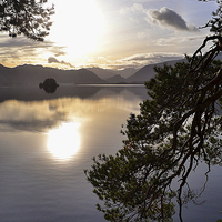 Buy canvas prints of Tranquility on  Derwentwater by Tony Johnson